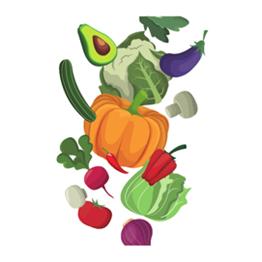Auf dem Bild ist unterschiedliches Gemüse abgebildet.