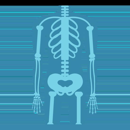 Blauer Körper mit sichtbarem Skelett
