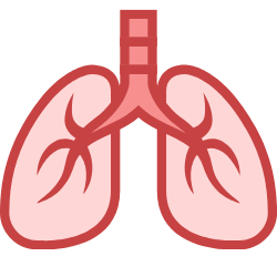 Zwei Lungenflügel im Comic-Stil