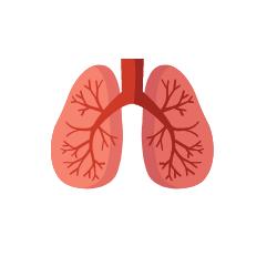 Wissen: symptome-lungenembolie.png